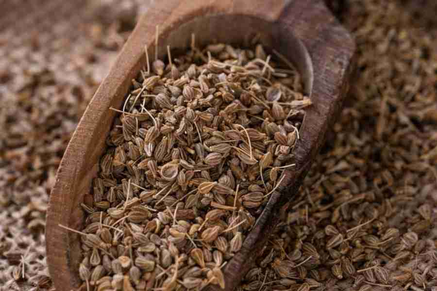 anise-seeds-as-a-substitute-for-star-anise