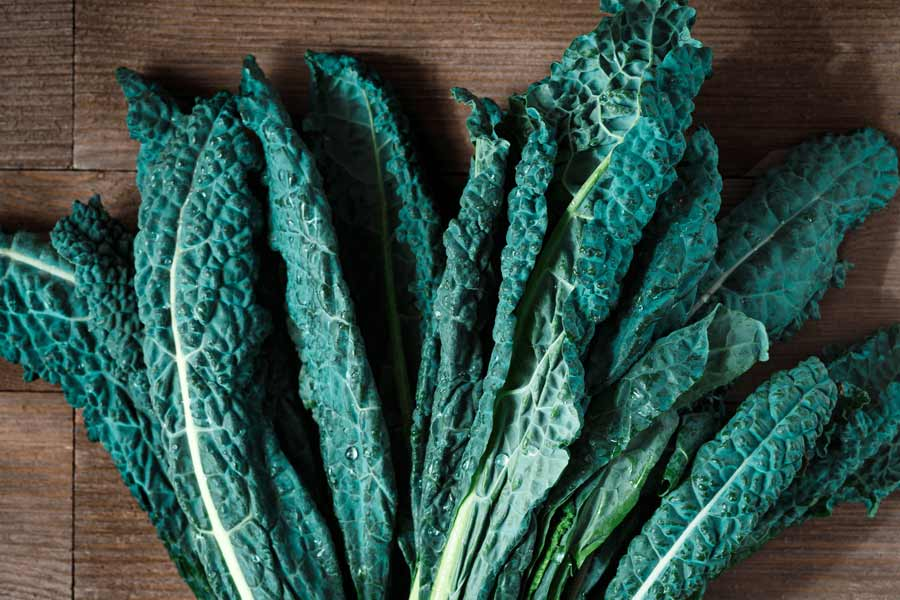 kale-as-a-substitute-for-arugula