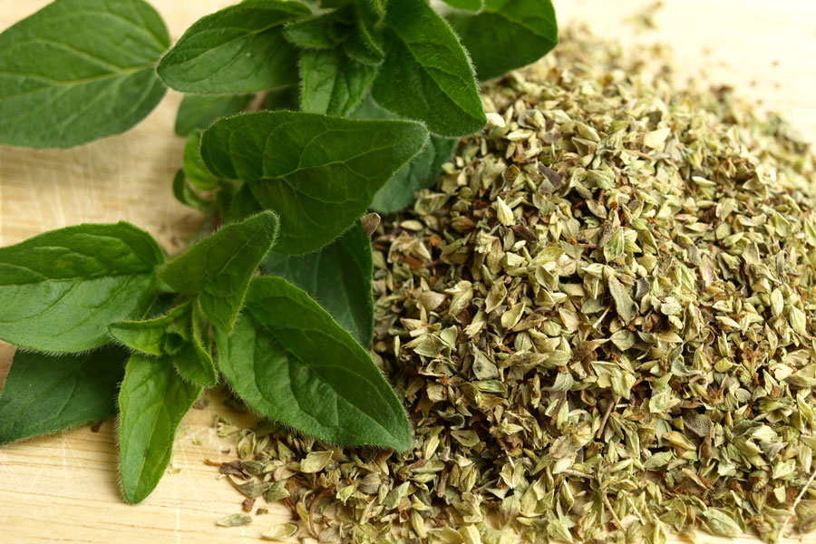 Oregano as a substitute for bay leaves
