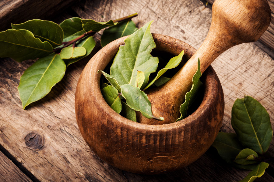 bay-leaf-as-a-substitute-for-curry-leaves
